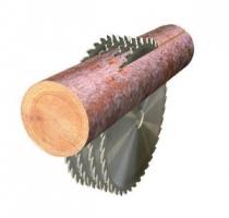 Экспериментальные исследования точности пиления древесины круглыми пилами с применением электромагнитных направляющих