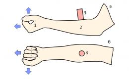 Измерение кровотока и теплопродукции в предплечье методом акустотермографии