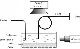Воздействие лазероиндуцированной гидродинамики на раковые клетки invitro
