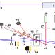 Исследование процессов записи светоиндуцированных решеток в твердых полимерных растворах