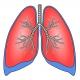 Модуль E14-140 в функциональной диагностике внешнего дыхания